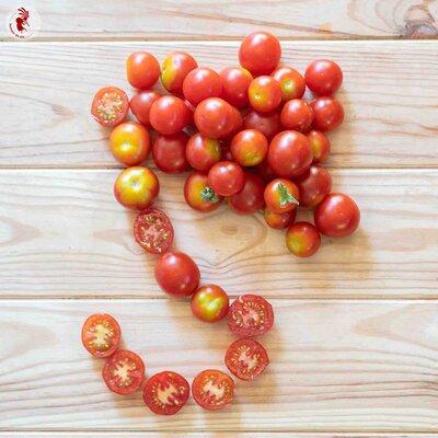 Tomates-Cerises - Délice du Jardinier