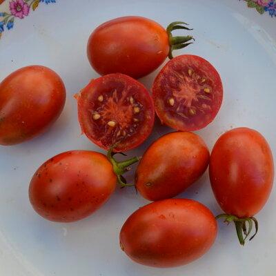 Tomates - Black Roma