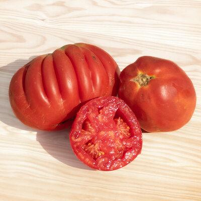 Tomates - Cœur de Bœuf de Nice