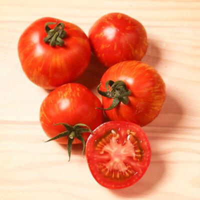 Tomates - Red Zebra