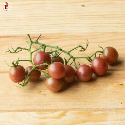 Tomates-Cerises - Black Cherry / Cerise Noire
