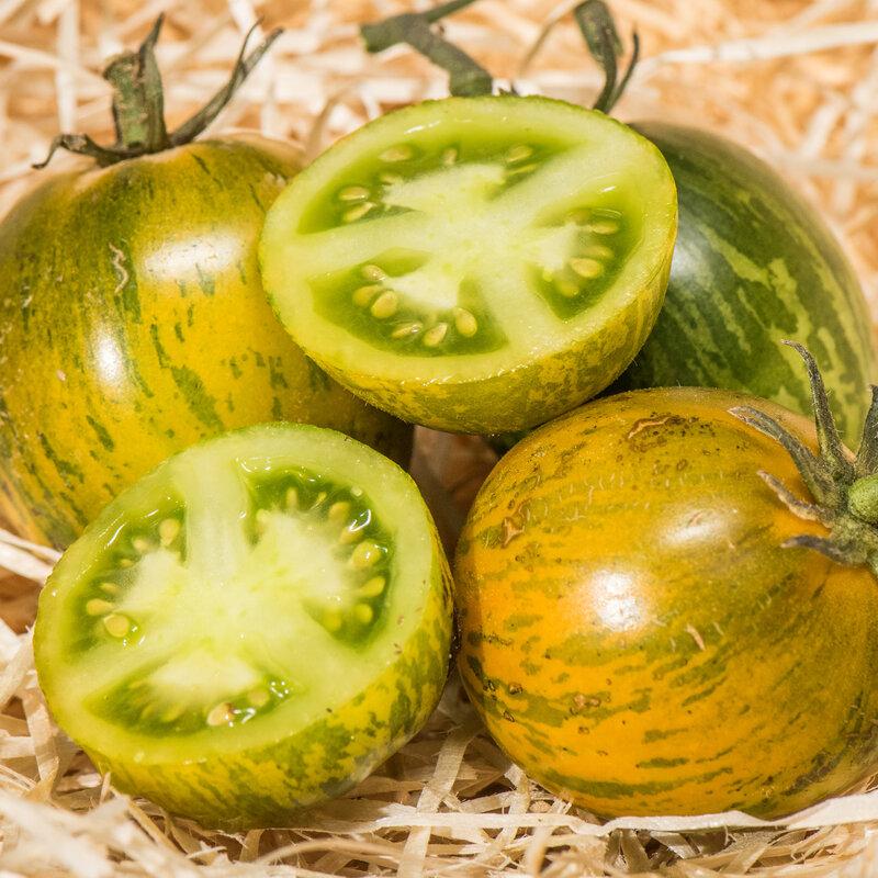 Tomates - Greener Zebra