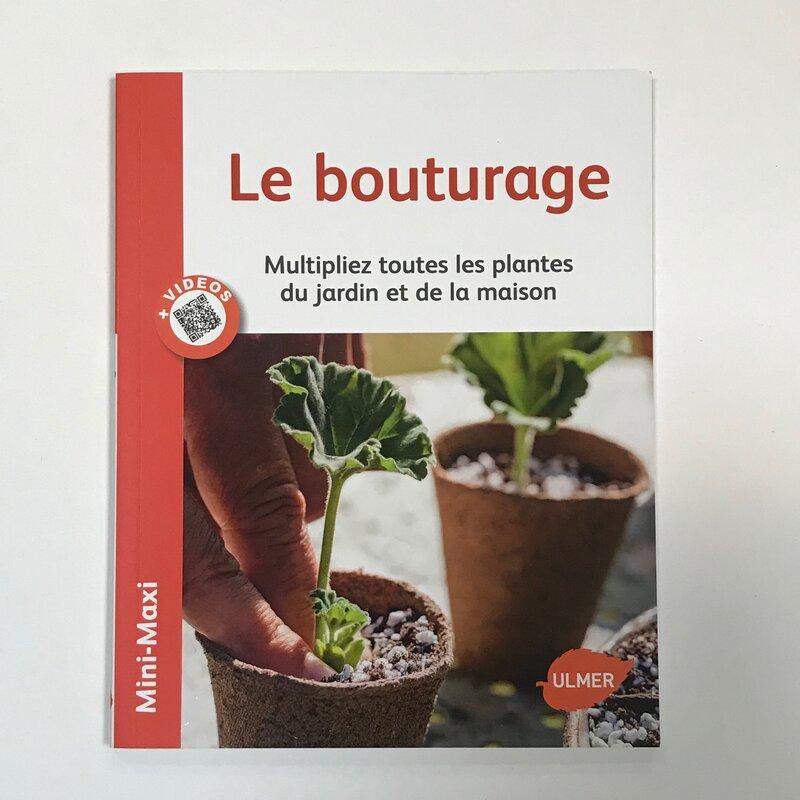 Jardinage - Le bouturage