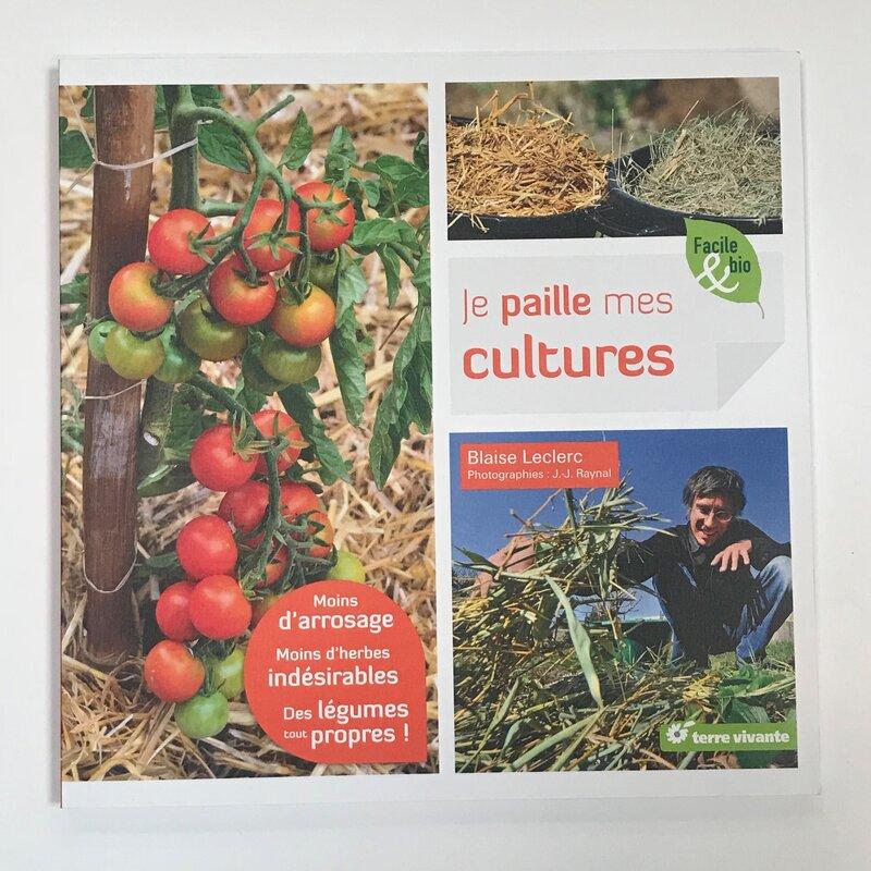 Jardinage - Je paille mes cultures. Moins d'arrosage, moins d'herbes indésirables, des légumes tout propres!