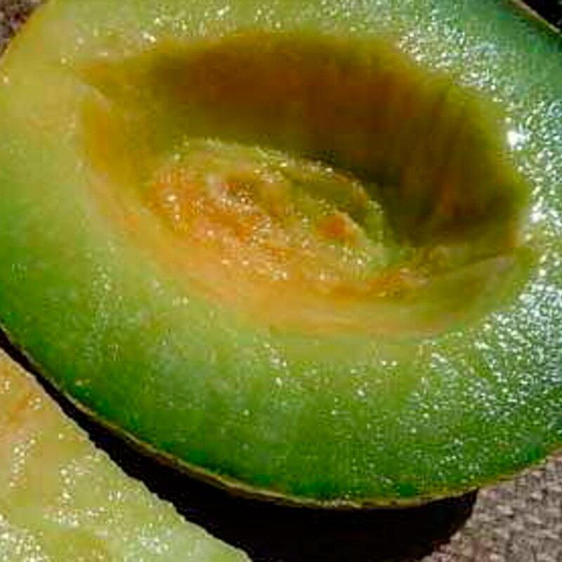 Melons - Eden Gem
