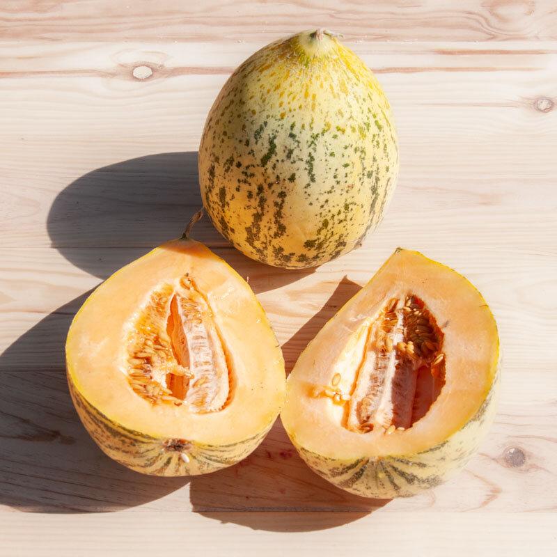 Melons - Eel River