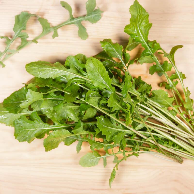 Roquettes - Cultivée