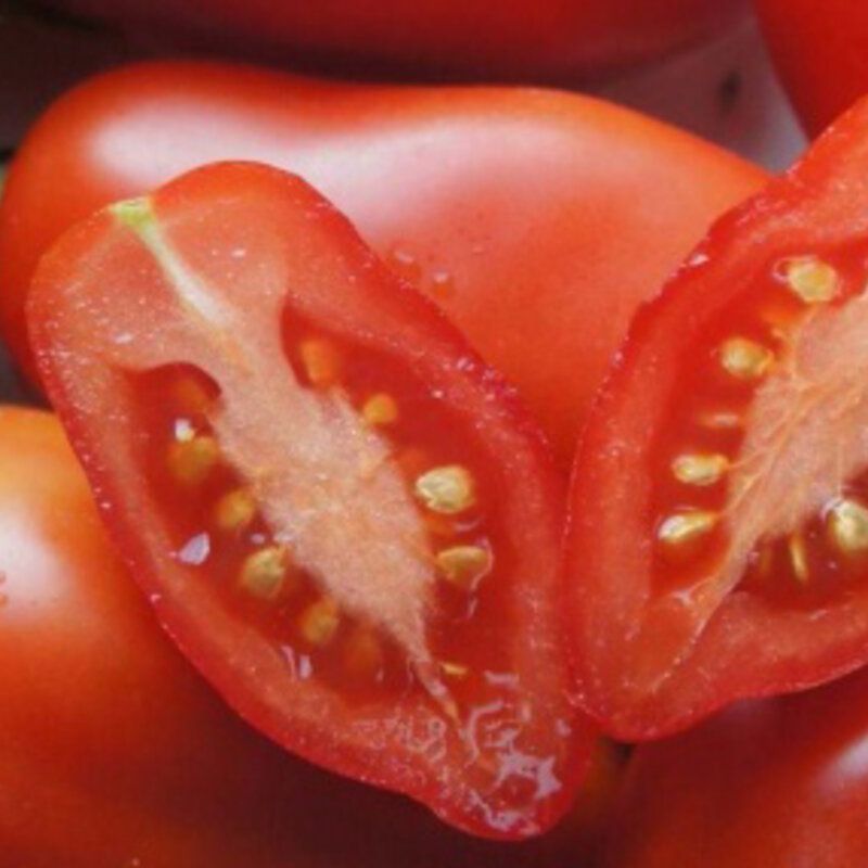 Tomates - Dix Doigts de Naples