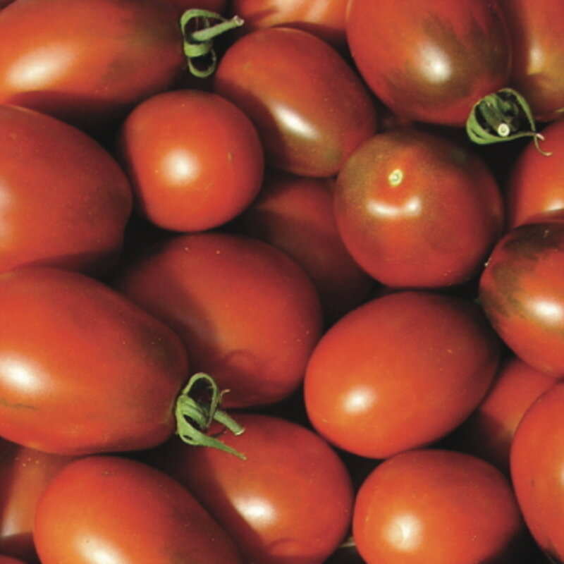 Tomates-Cerises - Brown Cherry