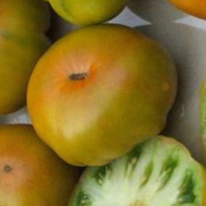 Tomates - Greenwich