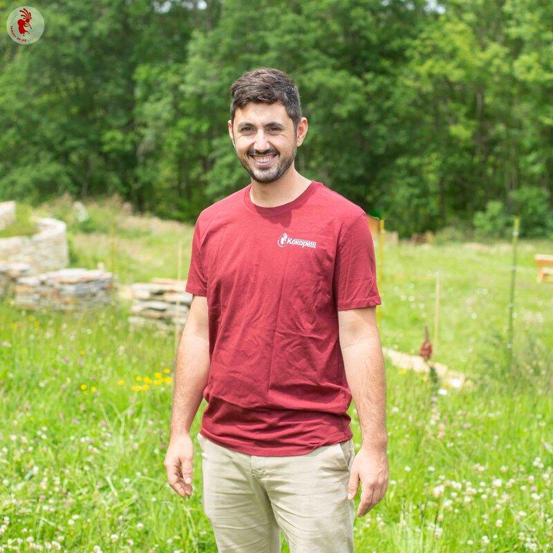 Vêtements - T-Shirt homme burgundy, taille XL
