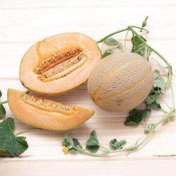 Melons - Arancino