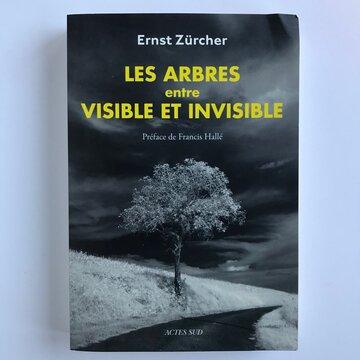 Arboriculture - Les Arbres, entre visible et invisible