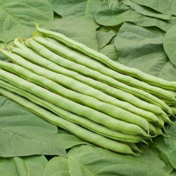 Haricots mangetout - La Vigneronne