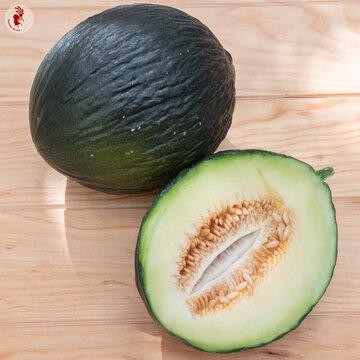 Melons - Vert Olive d'Hiver