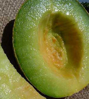Melons - Rocky Ford Green Flesh