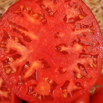 Tomates - Double Rich