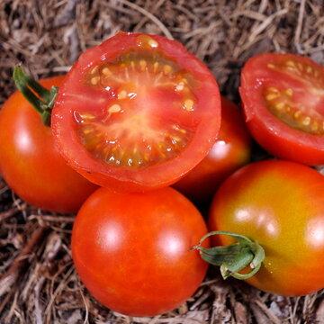 Tomates-Cerises - Cherry Delight