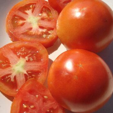 Tomates - Burbank