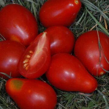 Tomates-Cerises - Poire Rouge