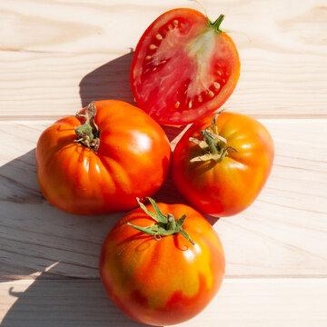 Tomates - Coeur de Boeuf Schilling Giant