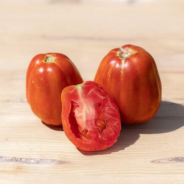 Tomates - Costoluto Fiorentino