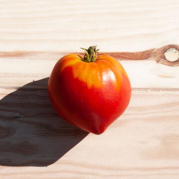 Tomates - Potiron Écarlate