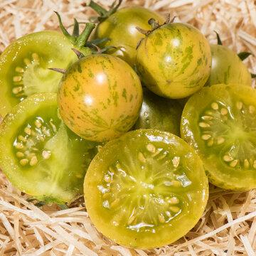 Tomates-Cerises - Abracazebra