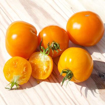 Tomates - Caro Rich
