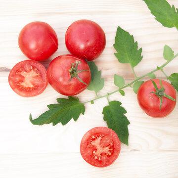 Tomates - Maritime Pink