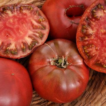 Tomates - Noire de Crimée