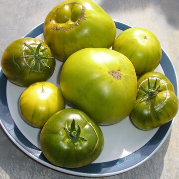 Tomates - Ananas Vert / Green Pineapple