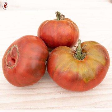 Tomates - Black Aisberg