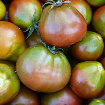 Tomates - Black Pear