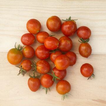 Tomates-Cerises - Red Centiflor Cherry