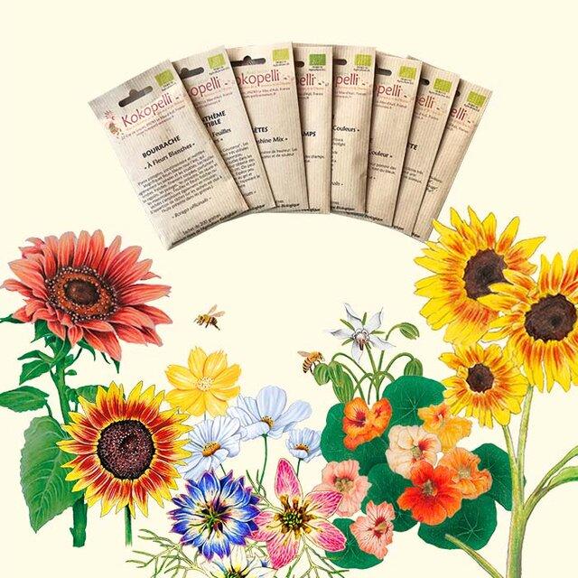 Collections Printanières - Fleurs Comestibles