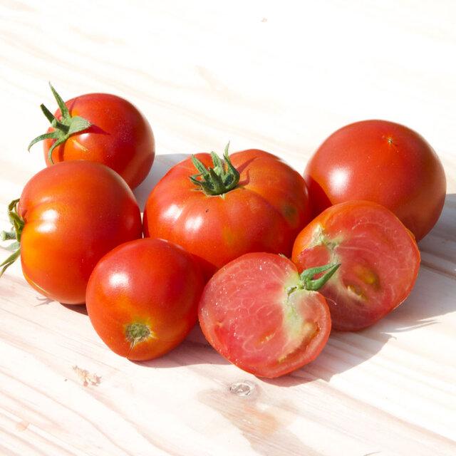 Tomates - Moskvich