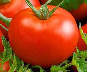Tomates - Thessaloniki
