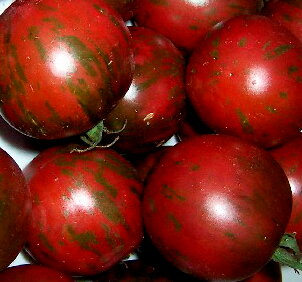 Tomates - Violet Jasper