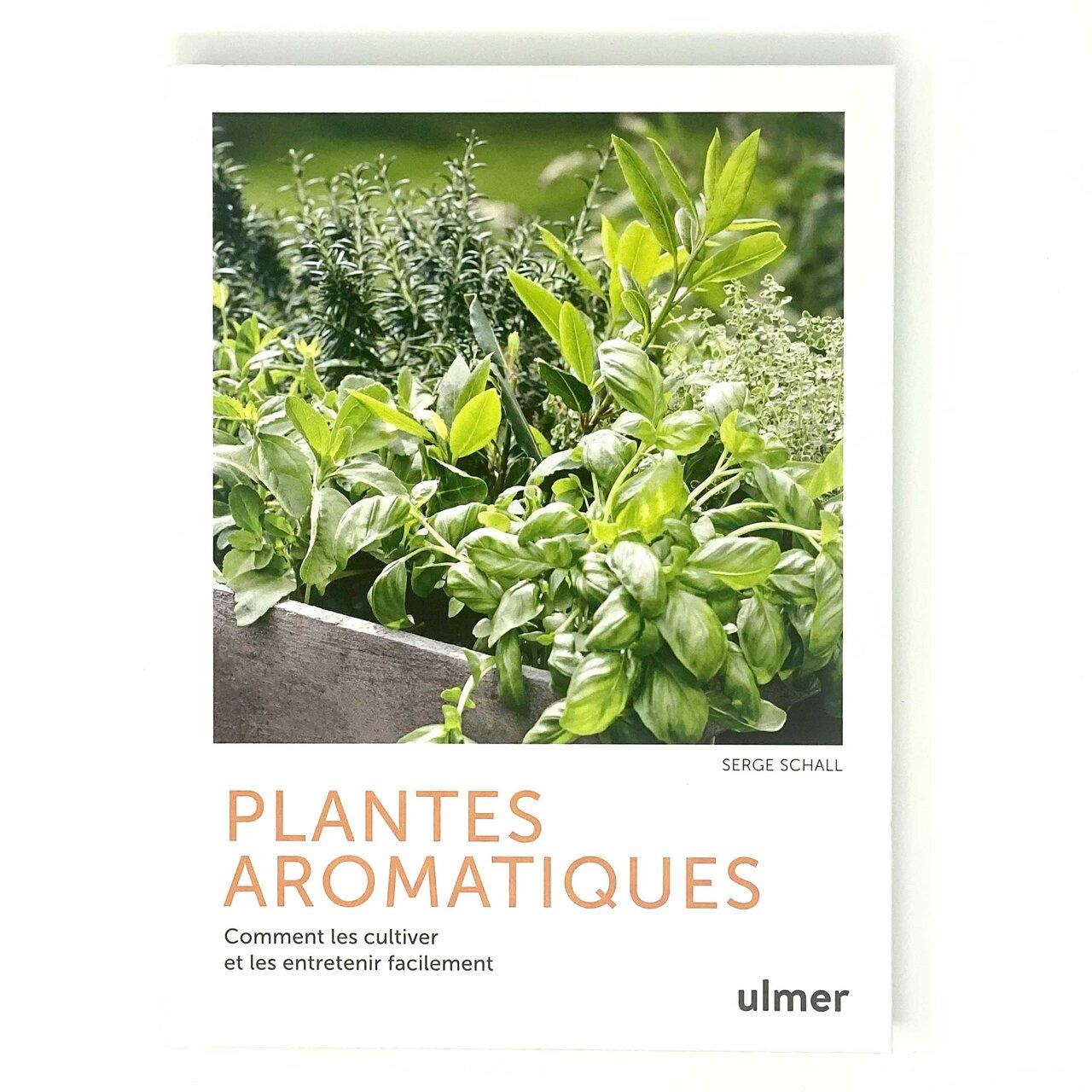 Connaissance des Plantes - Plantes Aromatiques