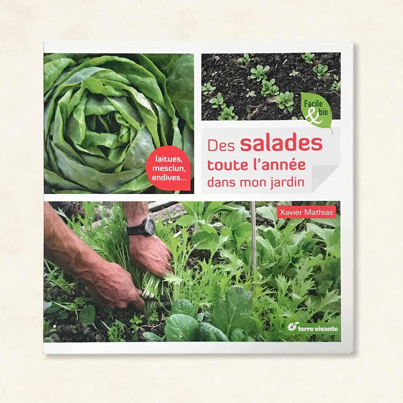 Jardinage - Des salades toute l'année dans mon jardin. Laitues, mescluns, endives…