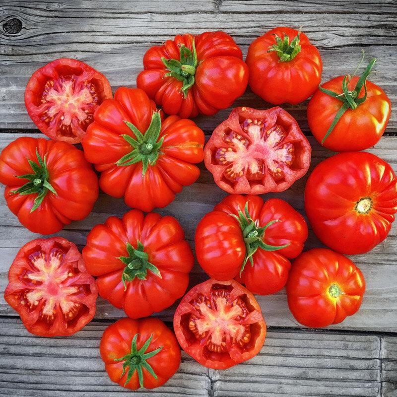 Tomates - Rosso Sicilian