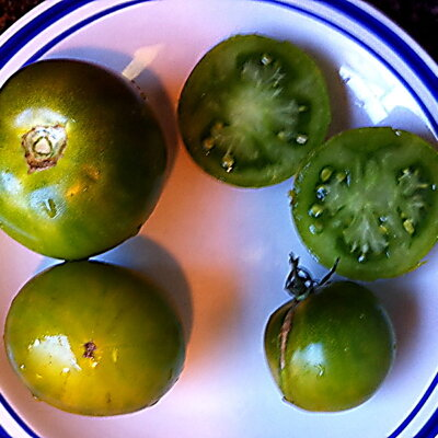 Tomates - Green Brandy