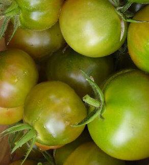 Tomates-Cerises - Aunt Ruby's German Cherry